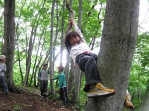 えいっ ~小さな手で藤蔓を握りしめ、小さな足で木の幹にしがみつく。誰からともなく始まったしがみつき大会。アイディアと笑顔が森じゅうにひろがる~